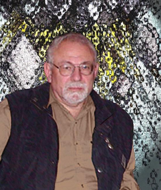 Евгений Яковлевич Габович